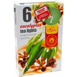 Illatmécses eukaliptusz 6 db-os