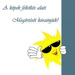 Lábtörlő Pico gumi-textil  40x60 cm